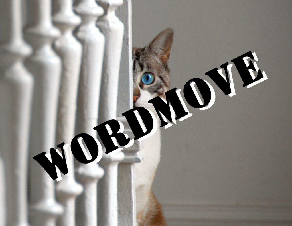 wordmove各種コマンド