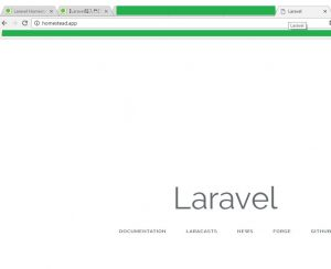 homestead-laravel